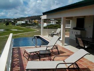 Private 3-bedroom Villa with infinity edge pool!, Frigate Bay