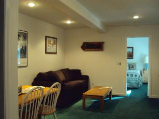 The Jumping Deer One Bedroom Apartment, just remodeled
