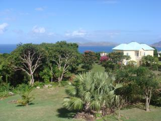 Charming  2-bedroom villa with pool and great view, Nevis