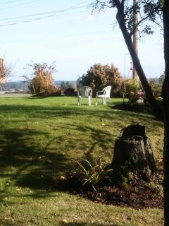 Side yard with ocean view