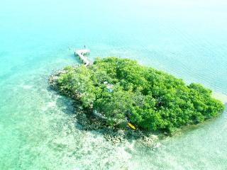 Island: View from Helicopter