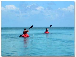 Island: Owner's Daughters kayaking