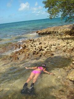 Island: Snorkeling