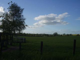 Looking over the fields from the farm