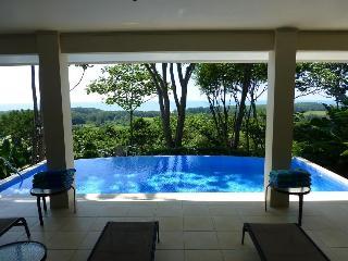 Large Infinity Pool