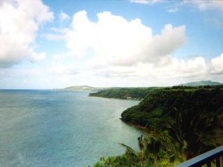 Hale Luna Koa: Kauai top floor ocean bluff condo, Princeville