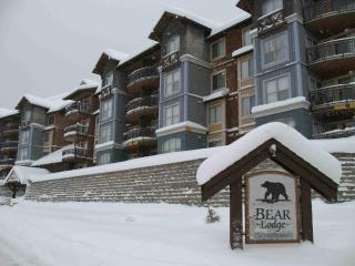 Bear Lodge - Ski in/ski out - Mount Washington