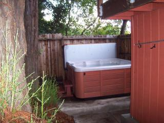 Large hot tub under the Redwood Trees