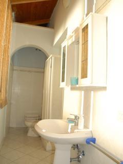 a bath/shower room