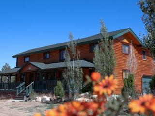 Big Bear Big Cabin