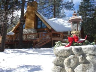 Luxury Mountain Log Home - in most desirable area, Idyllwild