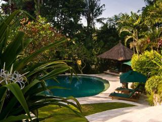 Villa Bougainvillea 3-bdrm Canggu Bali Riverside