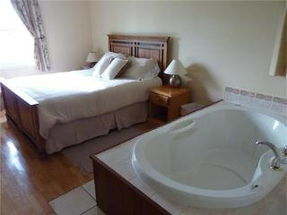 Dreamweavers deluxe 2 bedroom cottage with double air massage tub, great views