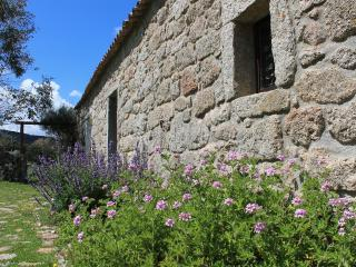 B&B Stazzo Chivoni. Lost in the Nature