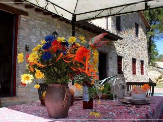 2 Bedroom Cottage in Castellina in Chianti, Castellina In Chianti