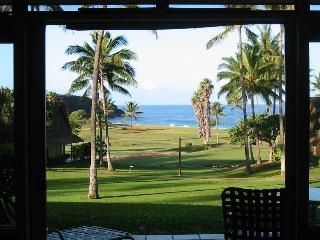 Incredible whitewater 1BR ocean view condo, Maunaloa