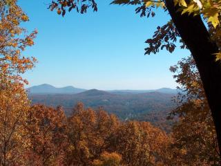 Cedar Mountain Chalet - 3 BR with Mt. Yonah view