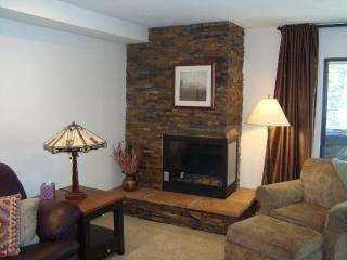 Ledger Stone Gas Fireplace - Not your typical Lake Cliffe!!