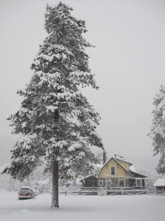 Winter Wonderland, during a major snow fall