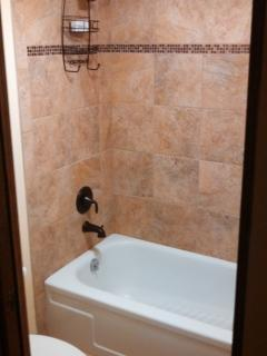 Guest Shower and tub