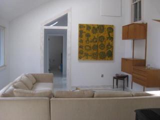 Large open living room, L shaped modern sofa