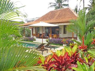 Villa Damai - Private open living villa w/ pool, Ubud