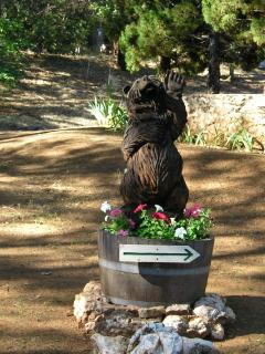 Welcome Bear