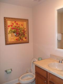 Twin/Guest Bathroom
