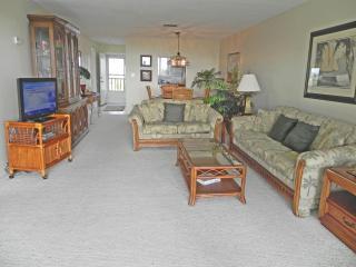 Living room has a tropical flair