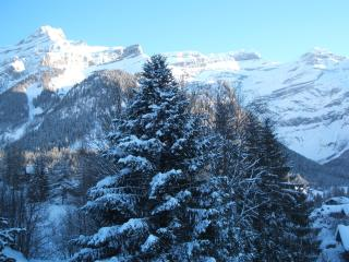 A6 Le Rocher Les Diablerets Switzerland