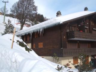 A6 Le Rocher Les Diablerets Switzerland