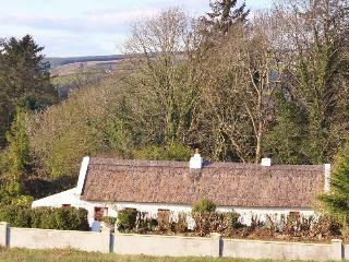 Cottage Mary Rose, 18th century Thatched Cottage,, Castleisland