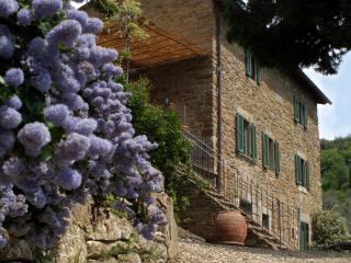 Villa with pool near Cortona - Villa Acrisio