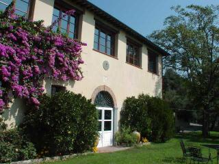 Lovely Large Villa Near Lucca with Four Apartments - Villa Nicodemus