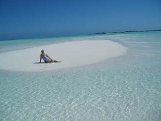 On Moriah Harbour Cay at lowtide, a deserted island.