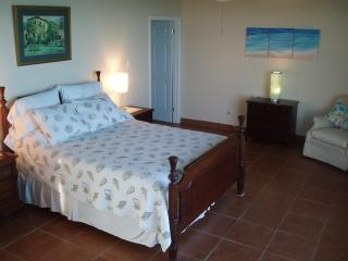 Air conditioned Master bedroom with Ocean views with queen sized bed, en suite bathroom and shower