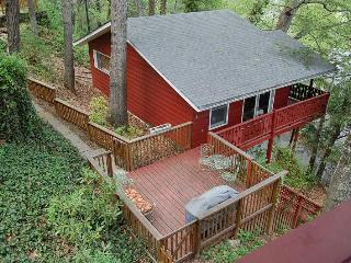 Pet-Friendly cabin 3 min. to downtown Asheville!