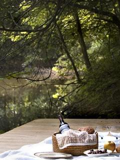 picnic by the pond