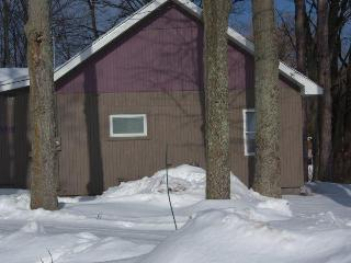 Northern Michigan 4 Bedroom Home Platte River, Honor