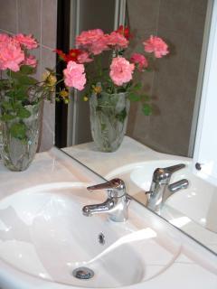 bathroom, Terrazzo apartment