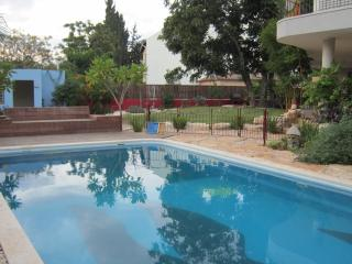 Eco Garden Apartment with Private Pool, Herzliya