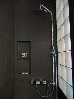walk-in shower with rain shower