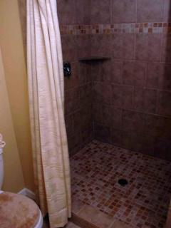 R&R master bath has a double shower