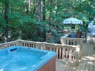 Secluded Twin Creek/Hot Tub/King/MassageChair/WiFi, Asheville