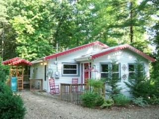 Romantic STORY BOOK COTTAGE/HotTub/King/Q/Gas FP/WiFi/Central AC/Kids & Dogs OK