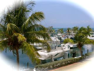 Oceanfront villa in Key Largo