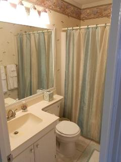 Main Bathroom with tub and shower.