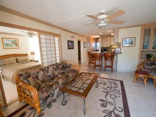 Spectacular Maalaea Bay Upscale Rental - 2 Bedroom
