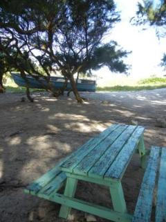 picnic table next to the beach