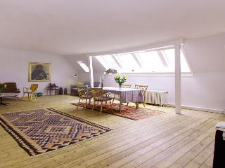 Beautiful and large Copenhagen apartment near Nyhavn, Copenhague